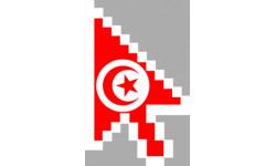 stickers /  autocollants curseur flèche Tunisien