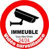 Sticker / autocollant : vidéo surveillance Immeuble - 20cm