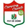 Sticker / autocollant : Camping car Puy de Dôme 63 - 15x11.2cm