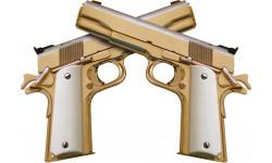 Sticker / autocollant : guns - 15x10.5cm