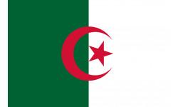 Sticker / autocollant : Drapeau Algérie - 5x3.3cm