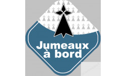 jumeaux breton hermine