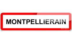 Montpelliérain et Montpelliéraine