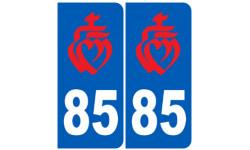 numero immatriculation 85 rouge (Vendee)