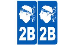 numero immatriculation 2B blanc (Haute-Corse)