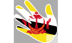 drapeau Brunei  main