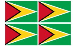 Stickers / autocollants drapeau Guyana