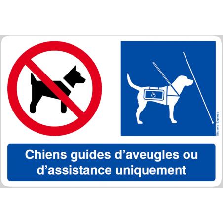 Autocollants : Interdit Sauf Chiens Guides
