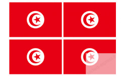 Sticker / autocollant : drapeau officiel Tunisie