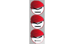 Stickers / autocollants bonnet rouge 2